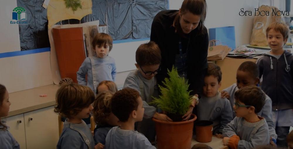 eco_escolas_2018